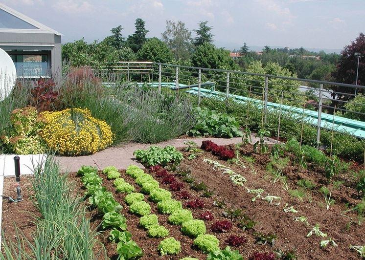 come realizzare orto in giardino schiavi