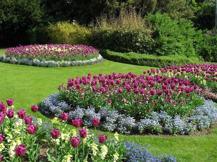 Fiori per giardino estivo schiavi for Piante fiorite perenni da esterno